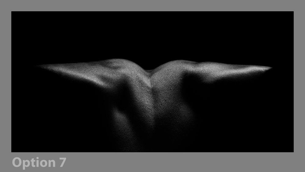 Bodyscape Social Selection Again